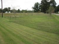 55 Bowman Road, Albertville, AL 35951