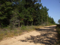 Lot 8 John David Rd, Gordon, AL 36343