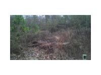 6912 Shadow Ridge Lane, Stone Mountain, GA 30087